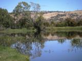 Macquarie River at Ross — 2