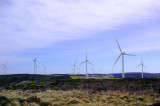 Wind Farm — 2