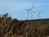 Wind Farm – 3