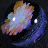 Blooming Galaxy Size: 1.85 Price: SOLD