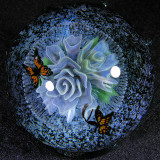 Pollination Size: 1.85 x 1.94 Price: SOLD