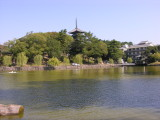 Walking from near Aki's other new shop to some more temples/museums.