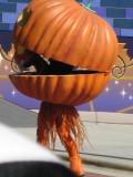 Little Pumpkin popped out of Big Pumpkin, ha.