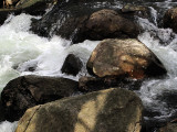 water-and-rock.jpg