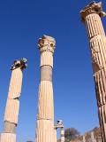 Ruins Ephesus190Y.jpg