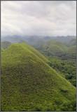 Chocolate Hills 15
