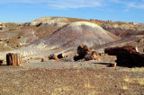 Chinle Mounds