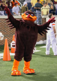 The HokieBird takes flight