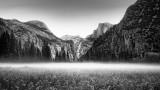 Morning Mist - Yosemite Valley
