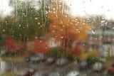 From my office window
