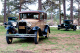 3 Model A's in the Trees