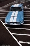 67 Shelby GT500 Portrait