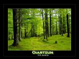 Oiartzun - Spain