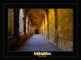 Lizarra - SPAIN