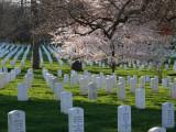 USA - April 2009