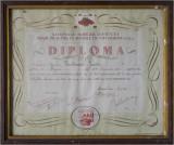 Grandfathers Diploma