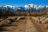 0608-A-Lonely-Road-of-Manzanar.jpg