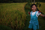 a little ricefield dance