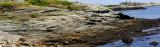 Wave Battered Rocks Pano