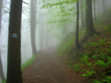Babia Gora Old Wives or Witches Mountain