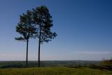 Double Pines