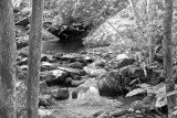 Small Waterfall, Cherokee Tn.