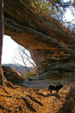 Red river Gorge, Double Arch