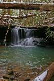 Pounder Branch, KY on Van Hook Falls trail.