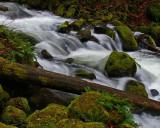 Ponytail Falls, OR