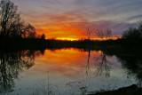 Homestead pond Scott county, KY