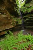 Hemlock Cliffs IN 134 P_edited-2.jpg