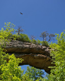 Natural Arch McCreary county, KY