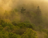 At sunrise from Sky Bridge, Red River Gorge, KY