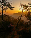 Sunrise at Settimi Point in the Red River Gorge, KY