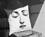 Sleep Pillow