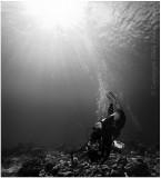 Underwater photography.