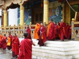 Monks leaving the Temple, Punakha