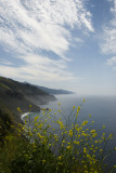 Big Sur Coastline_585a
