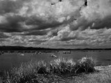 Under cloudy sky_