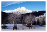 Jasper landscape with Pyramid Mt.