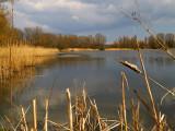 2008-04-14 Small lake
