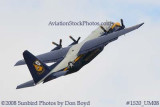 USMC Blue Angels Fat Albert C-130T #164763 at the Great Tennessee Air Show practice show at Smyrna aviation stock photo #1520