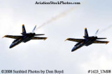 The Blue Angels #5 and #6 at the 2008 Great Tennessee Air Show practice show at Smyrna aviation stock photo #1423