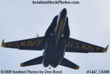 A solo Blue Angel at the 2008 Great Tennessee Air Show practice show at Smyrna aviation stock photo #1447