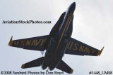 A solo Blue Angel at the 2008 Great Tennessee Air Show practice show at Smyrna aviation stock photo #1448