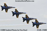 The Blue Angels at the 2008 Great Tennessee Air Show practice show at Smyrna aviation stock photo #1585