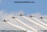 The GEICO Skytypers at the Great Tennessee Air Show at Smyrna aviation stock photo #1723
