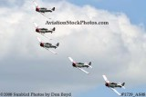 The GEICO Skytypers at the Great Tennessee Air Show at Smyrna aviation stock photo #1729