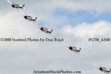 The GEICO Skytypers at the Great Tennessee Air Show at Smyrna aviation stock photo #1730