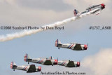GEICO Skytypers at the Great Tennessee Air Show at Smyrna aviation stock photo #1737